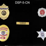 DSP5-CN.png